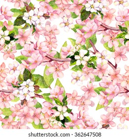Cherry blossom (apple pink flowers). Floral repeating pattern. Watercolor