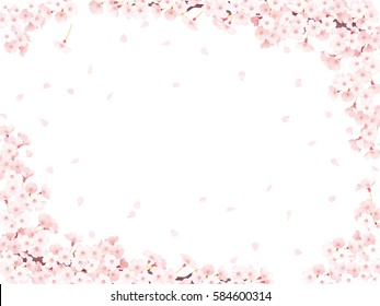 Cherry blossom frame white ,  3D illustration