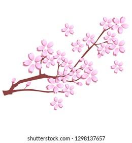 Cherry Blossom Spring Flower Icon