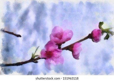 cherry-blossom-watercolor-260nw-15196311