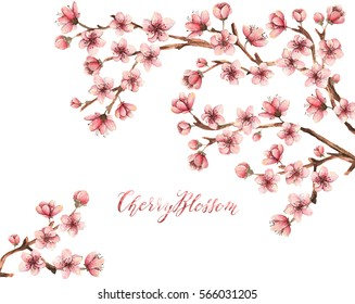 Cherry blossom,spring flowers watercolor illustration,branches, flowers,handmade,card for you