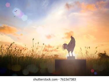 Chicken against autumn meadow sunrise background