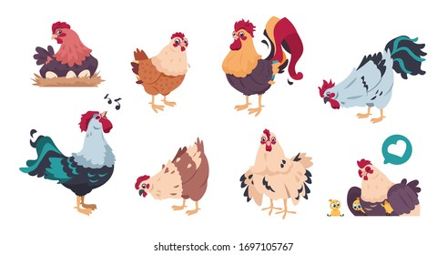 Chicken and rooster. Cute poultry farm characters, cartoon chick with baby chickens isolated.  illustrations colourful domestic birds set on white background