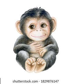 chimpanzee cub, baby monkey isolated on white background. Watercolor. Illustration. Template Clip art. Childrens illustration. Invitation design