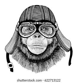 Chimpanzee Monkey Hand drawn image of animal wearing motorcycle helmet for t-shirt, tattoo, emblem, badge, logo, patch