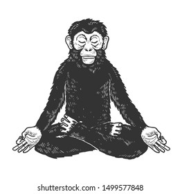 Chimpanzee monkey meditating in Lotus position sketch engraving raster illustration. Tee shirt apparel print design. Scratch board style imitation. Black and white hand drawn image.