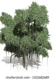 Banyan Garden Stock Illustrations, Images & Vectors   Shutterstock