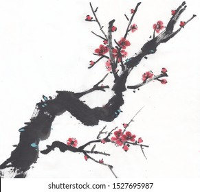 Chinese and Japanese style watercolor Plum blossom painting isolated on white background