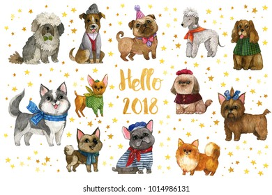 The Chinese new year 2018. Collection of the watercolor, hand drawing dogs. Colorful cute dogs, symbol of  2018 new year.