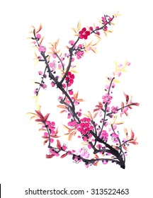 Chinese painting of flowers, peach blossom on white background