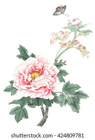 Chinese painting Peony And butterfly
