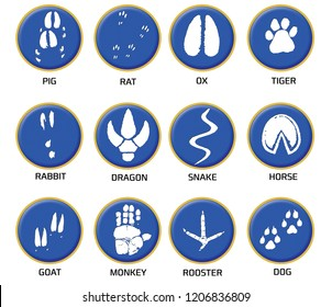 Chinese zodiac signs icons set on blue round background.  Paw prints marks , footprints of rat, mouse, snake, dragon, pig, rooster, rabbit, horse, monkey, dog, tiger, ox, bull. Illustration
