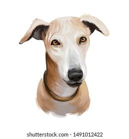 Kanni Dog Images, Stock Photos & Vectors | Shutterstock
