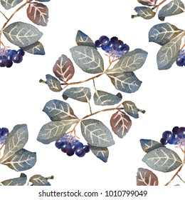 Chokeberry. Aronia painted with watercolors on white paper. Painted isolated natural organic fresh eco food illustration on white background. Watercolor floral seamless pattern