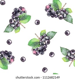 Chokeberry watercolor illustration  pattern