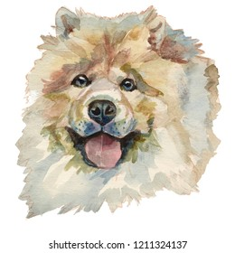 The Chow Chow Dog. Hand painted, isolated on white background watercolor dog portrait.
