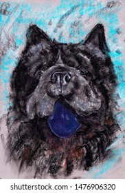 Chow Chow - a guard dog, companion, one of the oldest breeds of dogs. Drawn in pastel on paper.
