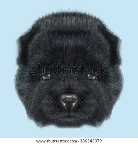Royalty Free Stock Illustration Of Chow Chow Puppy Illustrated