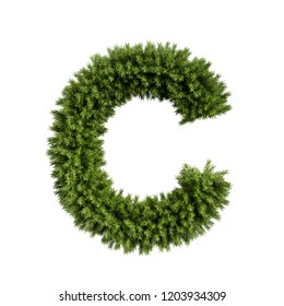 Christmas alphabet ABC character letter C font. Christmas tree branches capital letters decoration type. Highly realistic 3d rendering illustration. Text font isolated on white background