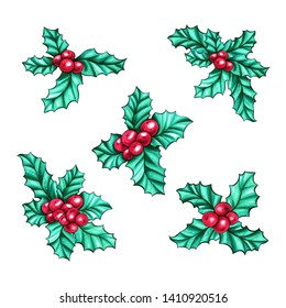 Christmas berry holly or ilex. Res xmas fruit. Winter aquifolium leaves decor. Christmas berry traditional symbols set
