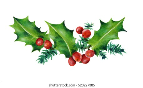 Christmas branch. Holly leaves and red berries. Watercolor illustration isolated on white background. Hand painted.