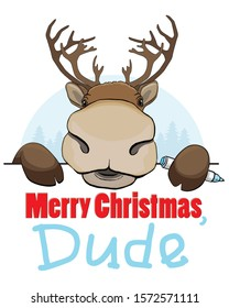 Christmas card with reindeer on white and blue background, funny deer peek a boo