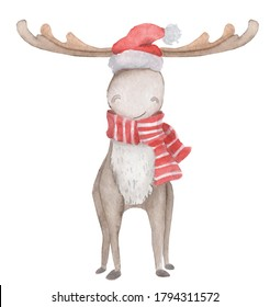 Christmas cute moose, elk with horns, in red scarf and Santa Claus hat. Watercolor illustration