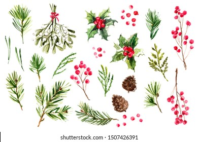Christmas decor, tree, winter berries, holly, mistletoe. Watercolor painting on white background of plants and twigs.