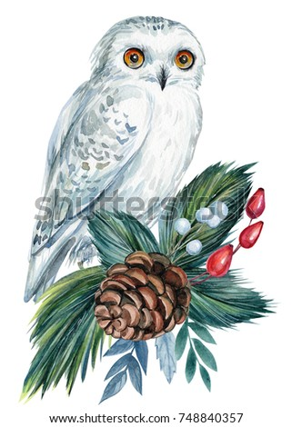 christmas decoration elements white owl cone spruce branches leaves wild rose