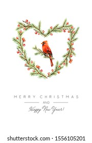 Christmas Greeting Card with Winter Spruce wreath and Red Cardinal Bird. Christmas Print Design with Congratulation Text