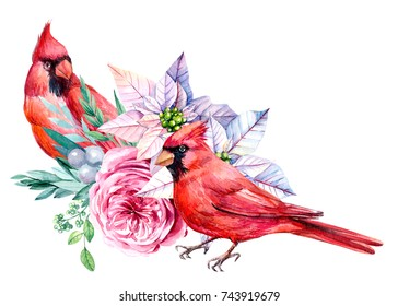 Christmas illustration with the watercolor poinsettia flowers, roses, leaves, red Cardinal bird