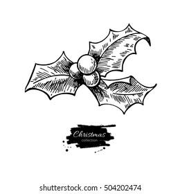 Christmas mistletoe, holly berry with leaves. Hand drawn illustration. Botanical Xmas decor element. Great for logo, icon, label, holiday decoration.
