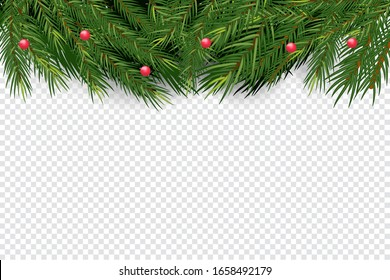 Christmas and New Year banner winth Realistic Spruce branches, Christmas tree.  Isolated on transparent background