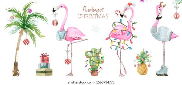 Christmas and New Year illustration. Hand painted watercolor winter flamingo isolated on white background.
