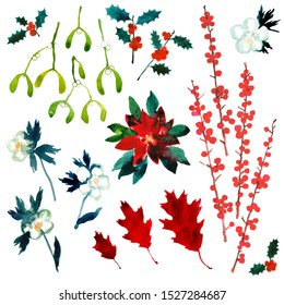 Christmas plants collection for seasonal greetings. Traditional December decoration. Holly, winter roses, mistletoe, poinsettia, red oak and possum haw in watercolour isolated on white background.