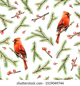 Christmas seamless pattern with Cardinal bird, fir and holly berries