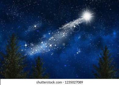 christmas star in the forest sky