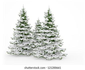 Christmas trees on white background