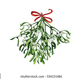 Christmas watercolor with mistletoe, red ribbon. Use it for wrapping paper, card or textile design. Hand drawn mistletoe twigs. Christmas mistletoe. Winter holiday window decor.