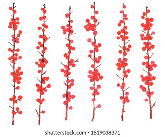 Christmas winter plants. Set of watercolour possum haw branches with red berries. Hand drawn botanical elements isolated on white background. Simple elegant design for seasonal greetings.