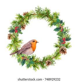 Christmas wreath with robin bird. Christmas Watercolor