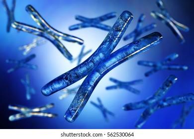 Chromosome. 3d rendering.