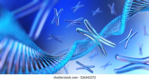 Chromosome. DNA. 3d rendering.