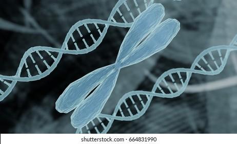Chromosome and DNA representation bioinformatics biotechnology concept, chromosome DNA strand helix on medical bioinformatics biotechnology background holographic medical design  3D render