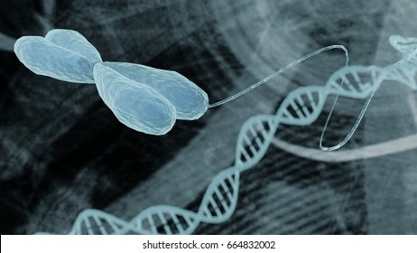 Chromosome and DNA representation bioinformatics biotechnology concept, chromosome DNA strand helix on medical bioinformatics biotechnology background holographic medical design  3D render