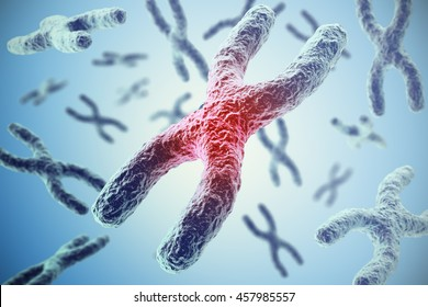 Chromosomes on blue background, scientific concept 3d illustration
