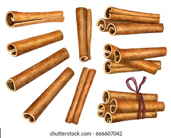 Cinnamon sticks isolated on white background. Watercolor illustration