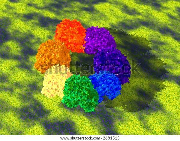 Circular rainbow made of trees