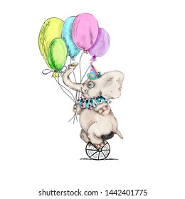 Circus character  vintage elephant watercolor drawing clipart illustration isolated on white