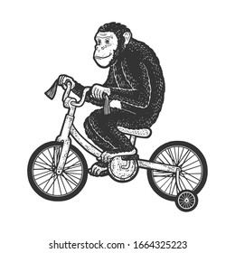 circus chimpanzee monkey rides a bicycle sketch engraving raster illustration. T-shirt apparel print design. Scratch board imitation. Black and white hand drawn image.